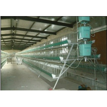 Poultry  Layer Chicken cage poultry cages Chicken Layer Egg Cage chicken coop , BIRD CAGE  poultry farm