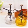 brass hand pump sprayer Kitchen mist olive cooking oil sprayer pump abs plastic Pump brass double use sprayer dosage