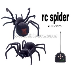big size RC Spider