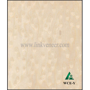 WCE-Y,white cat eye veneer,engineered wood veneer