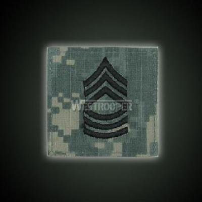 ACU BADGE