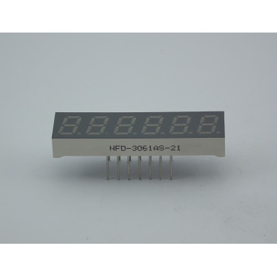 LED Six Digit Display