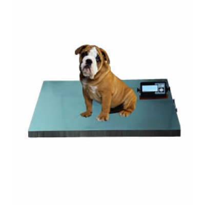Veterinary Scale