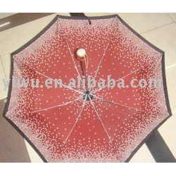 Fashion umbrella