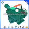 WZB self-priming garden irrigation water booster pump