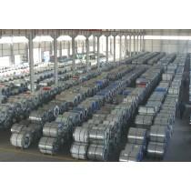 pre-painted galvanized steel coil PPGI