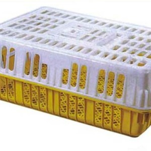 Transport Crate Plastic Poultry chicken Transport plastic   chicken cage poultry layer cage