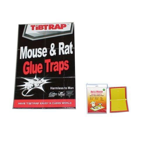 Ratón y rata trampas de pegamento