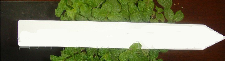 plant Tag plant label