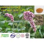 High Quality Valerianic Acid 0.6%,0.8% Valerian Extract
