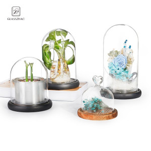Crown Glass Cover Fresh flowers Cake Display Dome Cloche