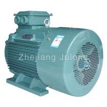 Y2-355 Induction motors