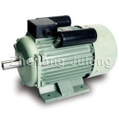 YLSeries Electric motors