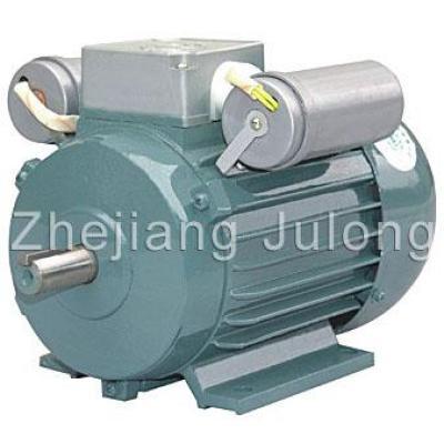 YL Series Induction motors