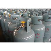 اسطوانات غاز البترول المسال المنزلي  YSP12
