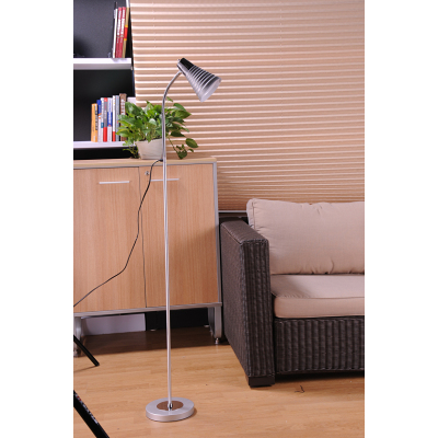 Metal Decorative Floor Lamp JM-3