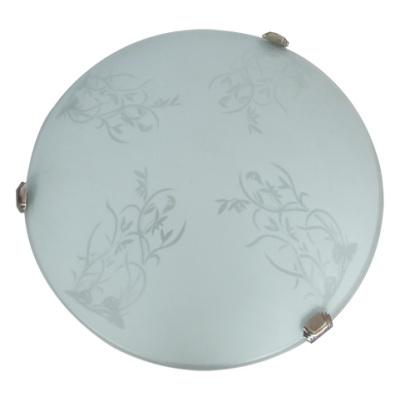Metal Glass LED Ceiling Lamp OT-278