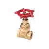 China Brass gate valve with iron wheel NDL-7006