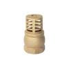 China Foot valve
