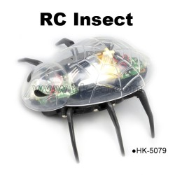 transparent rc beetle toy