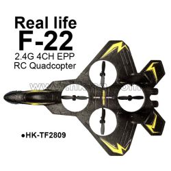 real life F22 Fighter 4-axis EPP 2.4G 4CH RC Airplane