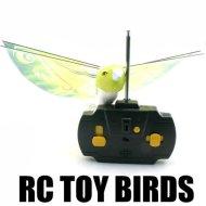 耐久EPP材料を持つ2CH rcのおもちゃの鳥