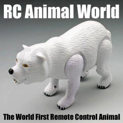 De juguete de plástico, oso juguetes de los animales, mini rc de juguete de los animales, rc juguete del oso