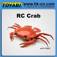 rc jouet de rc jouet à télécommande de crabe