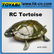 rc rc jouet animal tortue jouet à télécommande