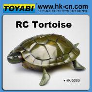 亀のrcリモートコントロールのおもちゃのrc動物のおもちゃ