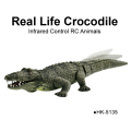 Infrared Control Real Life Crocodile Animal
