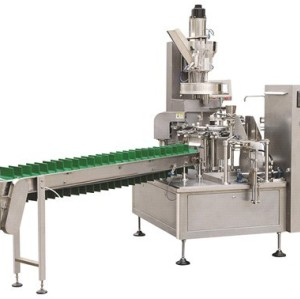 Premade Bag Pickled Food Packing Machine