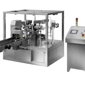 Pre-made Bag Packaging Machine(RZ8-270)