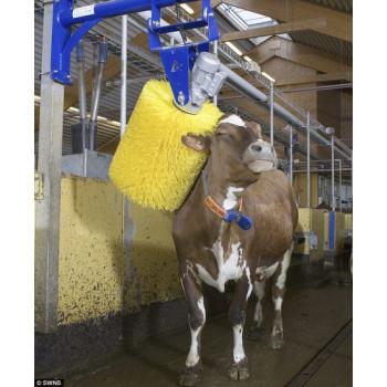 cow self-brushing kit
