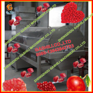 stainless steel commercial farm high efficience pomegranate machine