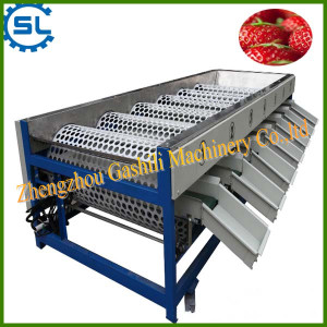 Hot selling fruit sorting machine