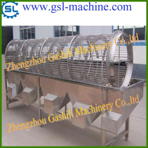 hot selling fruit grading machine