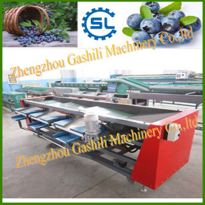 Hot selling blueberry grading machine