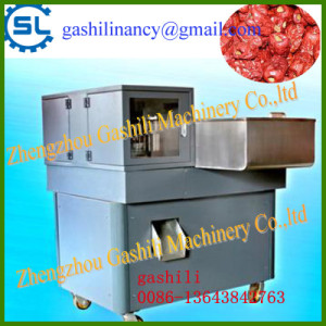 CE certification attractive quality dates pitting machine