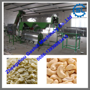 newly developed automatic cashew nuts peeling production line