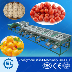 factory price size customized garlic sorting machine
