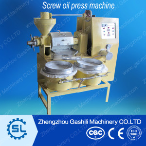 Screw oil press machine with filter