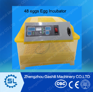 48eggs Mini Egg Incubator Chicken Egg Hatching Machine