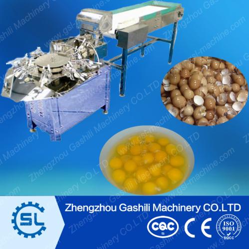 egg breaking machine manufacturers