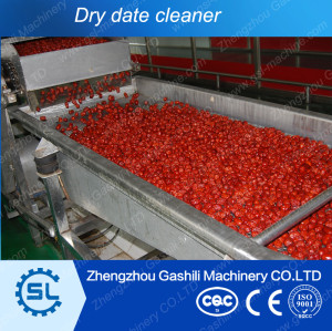 2-3t/h 304 stainless steel dry dates cleaning machine