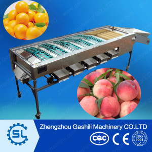 top quality apple sorting/grading machine