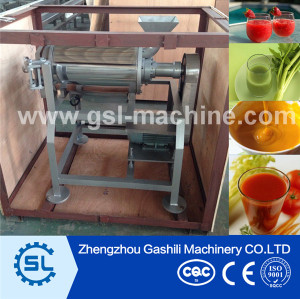 Factory selling Professional Fruit beater with high quality