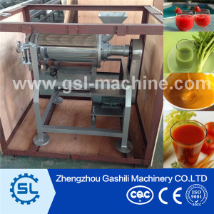 Newest changeable Strawberry pulping machine made in China