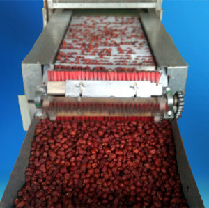 Commercial low cost red dry dates cutting machine