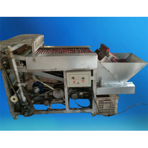 New generation date processing equipment red dry dates cutting machine